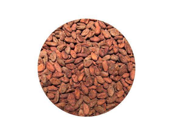 Kakaobohnen & Nibs